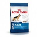 Den sunde hund får du ved at tænke dig om når du køber hundefoder (Foto Petworld.dk)