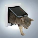En glad kat med lem (foto lavprisdyrehandel.dk)